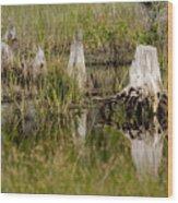 Marshland Reflections Wood Print