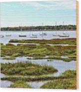 Marshlands Wood Print