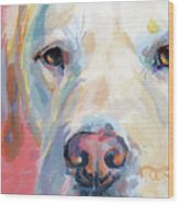 Martha's Pink Nose Wood Print by Kimberly Santini