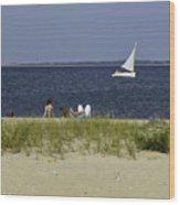 A Day At The Beach 2 - Martha's Vineyard Wood Print