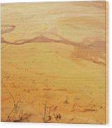 Martian River Wood Print