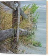 Marvel Of An Ordinary Fence Wood Print