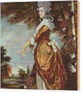 Mary Amelia First Marchioness Of Salisbury Wood Print by Sir Joshua Reynolds