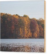 Maryland Autumns - Clopper Lake - Fall Bloom Wood Print