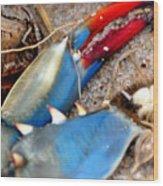 Maryland Blue Claw Wood Print