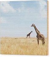 Masai Giraffe In Kenya Plains Wood Print