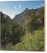 Masca Valley And Parque Rural De Teno 2 Wood Print