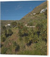 Masca Valley And Parque Rural De Teno 3 Wood Print