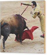Matador El Cid II Wood Print