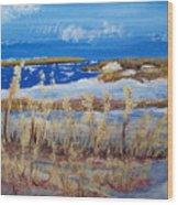 Matagorda Island Texas Wood Print