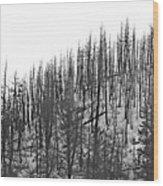 Matchsticks Wood Print