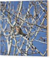 Mate In Waiting Wood Print