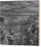 Mather Point B/w Wood Print