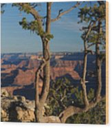 Mather Point South Rim Grand Canyon Wood Print