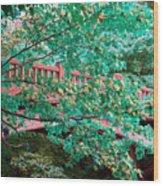 Matthiessen State Park Bridge False Color Infrared No 1 Wood Print