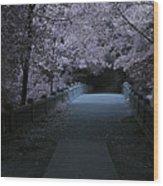 Matthiessen State Park Bridge False Color Infrared No 2 Wood Print