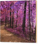 Matthiessen State Park Trail False Color Infrared No 2 Wood Print