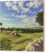 Matunuck Corn Fields Wood Print
