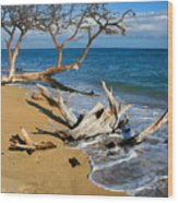 Maui Beach Dirftwood Fine Art Photography Print Wood Print