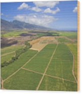Maui Farmland Wood Print