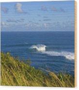 Maui, Jaws Landscape Wood Print