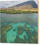 Maui Landscape Wood Print
