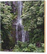 Maui Waterfall Wood Print