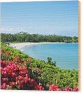 Mauna Kea Beach Wood Print