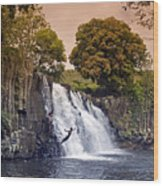 Mauritius Rochester Falls Wood Print