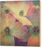 May 10 2010 Wood Print