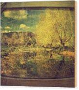 May 3 2010 Wood Print