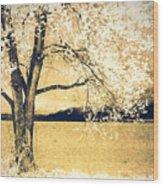 May 5 2010 Wood Print