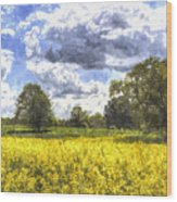 May Farm Art Wood Print