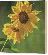 May Flowers Wood Print