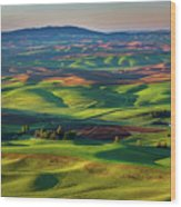 May On The Palouse  Wood Print