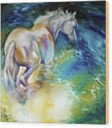 May Waterbaby Equine Wood Print