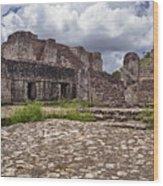 Mayan Ruins 1 Wood Print