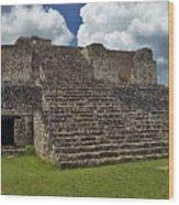 Mayan Ruins 2 Wood Print