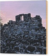 Mayan Ruins In Cozumel Mexico Wood Print