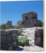 Mayan Ruins In Tulum Wood Print