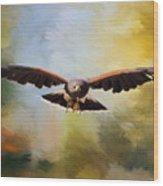 Maybe - Hawk Art Wood Print