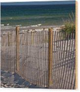 Mayflower Beach Wood Print
