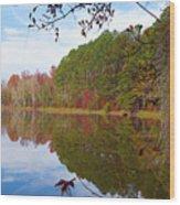 Mayor's Pond, Autumn, #7 Wood Print