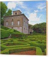 Mazed Garden Wood Print