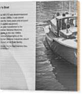 Mb 172 Epic Lass Information Wood Print