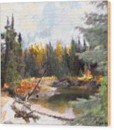 Mccall Landscape Wood Print
