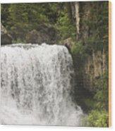 Mccloud Upper Falls Wood Print