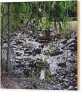 Mcdonald Lake Stream Wood Print