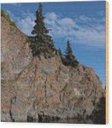 Mchugh Falls Wood Print by Heike Ward