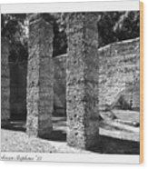 Mcintosh Sugar Mill Tabby Ruins 1825  Wood Print